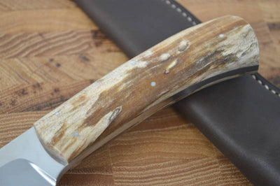 Arno Bernard Elephant - Spalted Maple Handle - N690 Steel - Northwest Knives