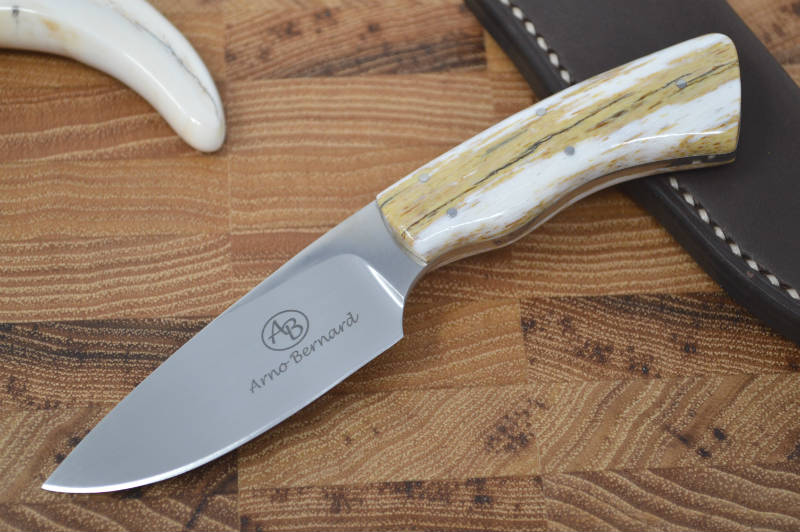 Arno Bernard Gecko - Giraffe Bone Handle - N690 Steel (A1)