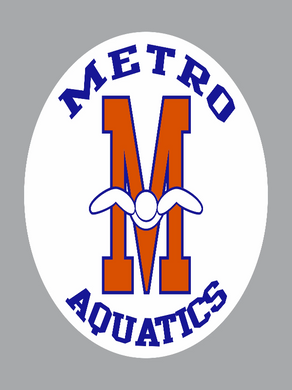 2018 Spirit Metro Decal