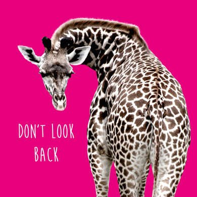 Don't Look Back (Giraffe)