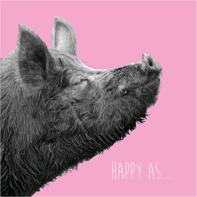 Happy As... (Pig)