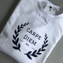 Load image into Gallery viewer, Carpe Diem sweater