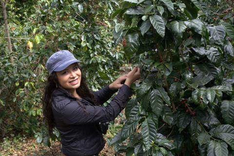 "Coffee Review: Maritza Taylor is one of the top ""Women In Coffee""!"
