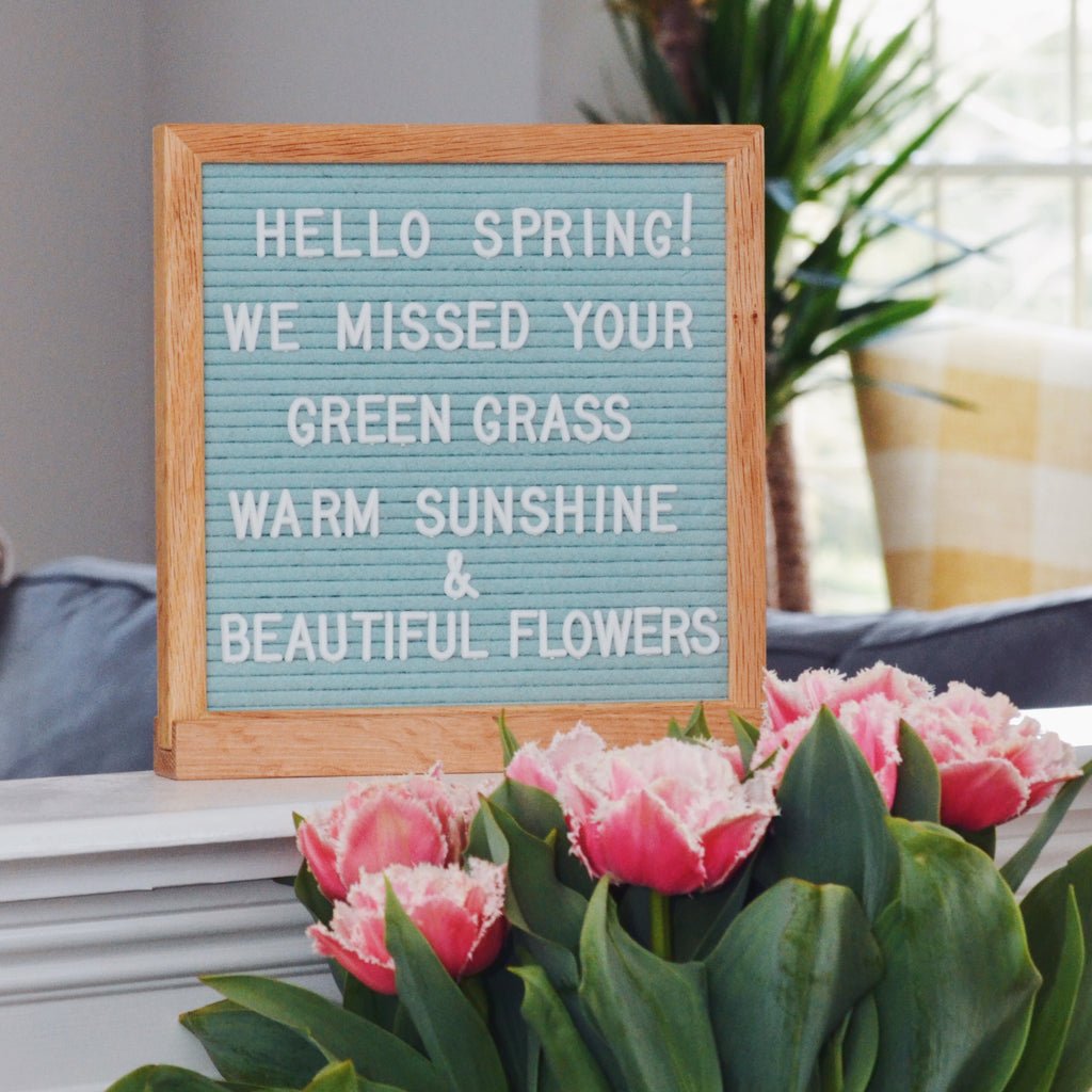 "Memo: Seafoam Green 10"" x 10"" Letter Board Set"