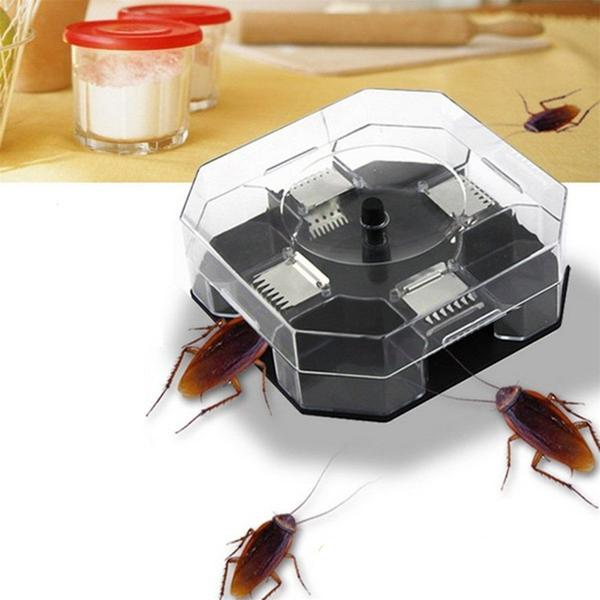 Trap-box for cockroaches
