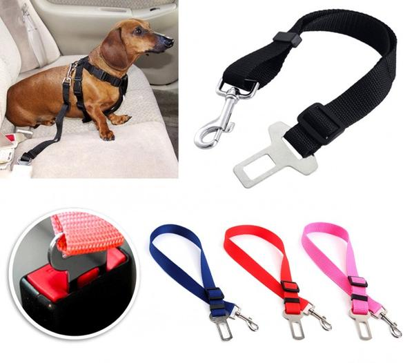 Safety strap for dogs and cats