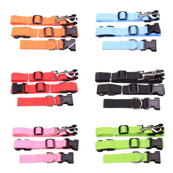 Dog collar for jogging