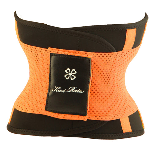 Multi-Function Belt for Sport and Wellness