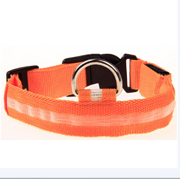LED collar for dog