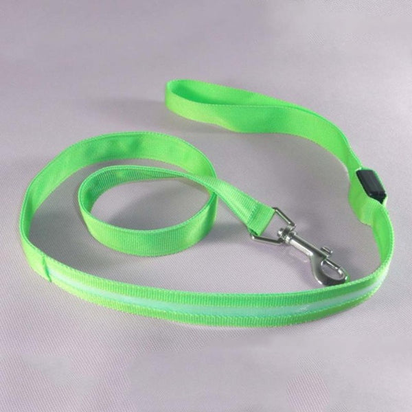 LED leash for dog and cat