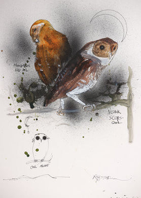Ralph Steadman Nextinction Owls Signed Print