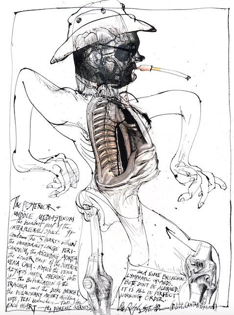 Ralph Steadman Signed The Posterior and Middle Mediastinum Print