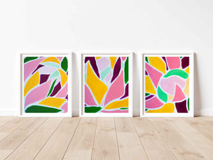 King Protea - Set of Three