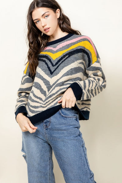 Multi Color Zebra Sweater