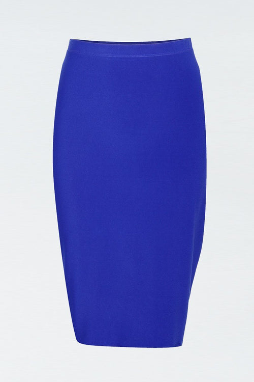 Women's Blue Basic Skirt Rosarini