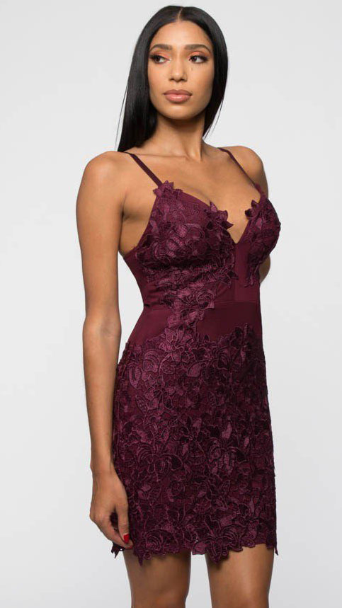 Saturday Love Dress in Plum