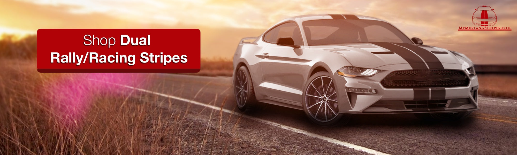 Grey mustang product photo matte black dual racing rally stripes lemans style