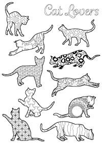 Cat Colouring In Pages