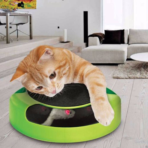 Moving Mouse Cat Toy - Cat Lovers Australia