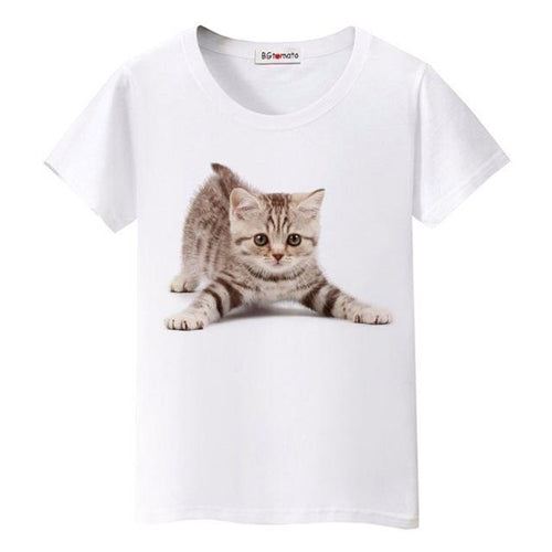 Kitten Playing Women's T-Shirt - Cat Lovers Australia