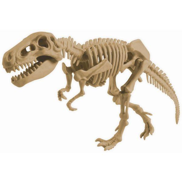 Dig it Tyrannosaurus Rex – Animal Planet - Educational Resources