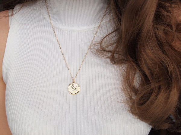 aries medallion necklace, 14k gold filled chain