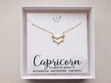 capricorn necklace in gift box, birthday gift for capricorn