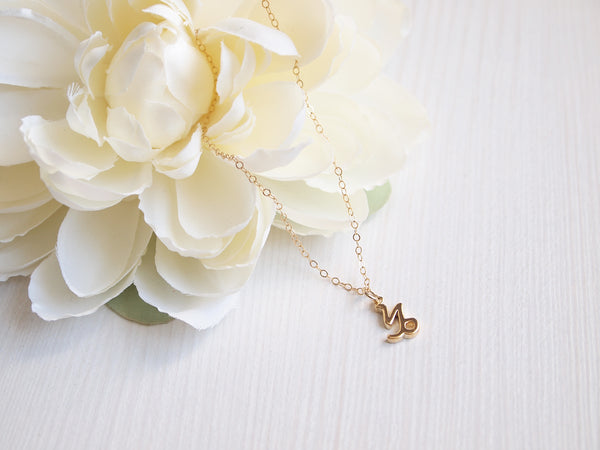 dainty gold capricorn necklace, 14k gold filled chain