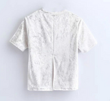 New fashion velvet round collar short sleeve pure color top shirt white gray