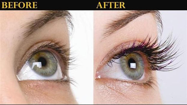 Eyelash growth serum hollyberry cosmetics