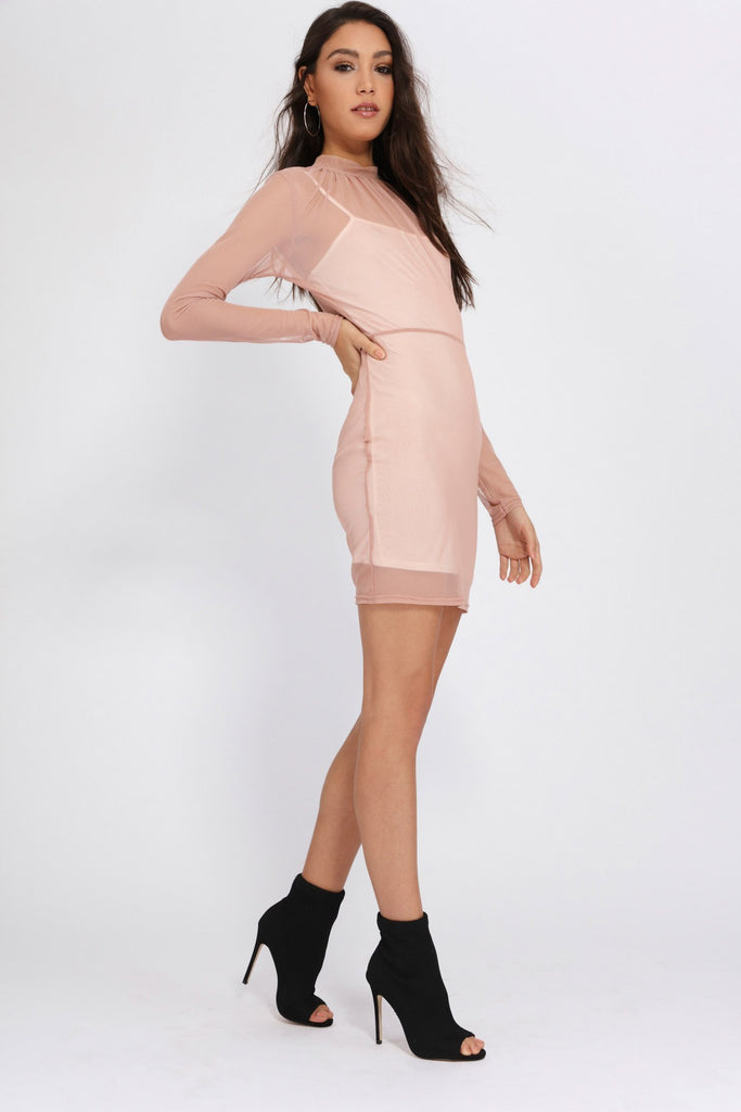 Rose Mesh Long Sleeved Mini Dress