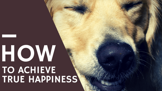 How To Achieve True Happiness