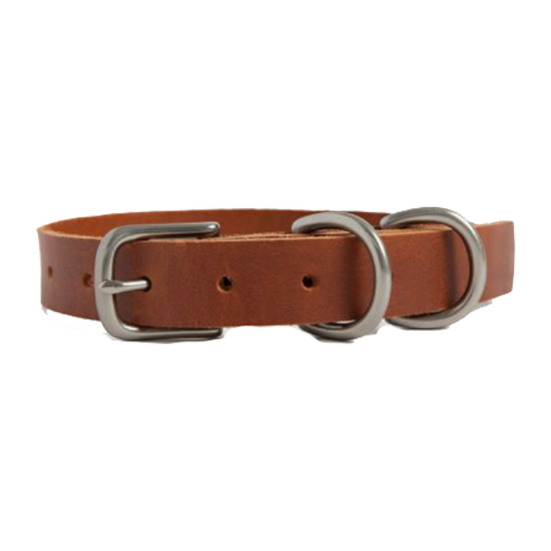 DOG COLLAR SMALL ANTIQUE DOUGLAS COGNAC