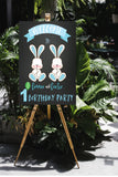 Spring bunnies twin boy party decoration