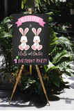 Some bunnies twin girl birthday welcome sign