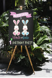 some bunnies twin 1st birthday sign decoration