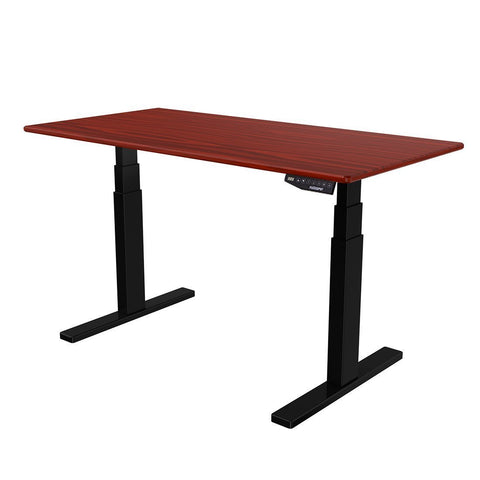 FlexiSpot Electric Height Adjustable Desk - bringown