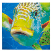 Fish Lips Outdoor Canvas Art Print - 35x35