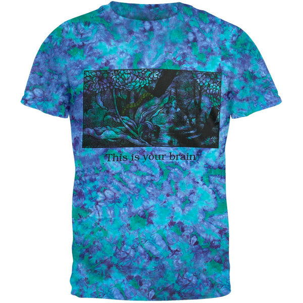 Your Brain On Shrooms Tie Dye T-Shirt