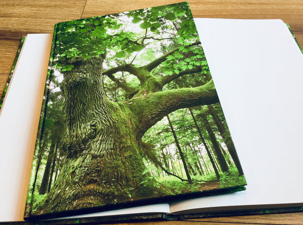 Hardcover A4 blanko Baum