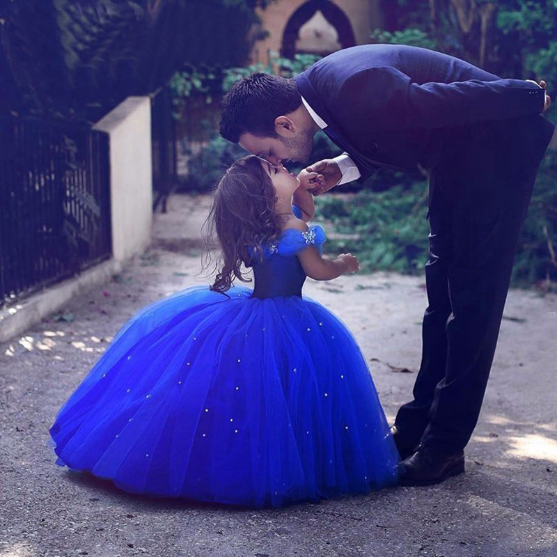 Cinderella Flower Girl Dresses Kid Pageant Gowns 2018