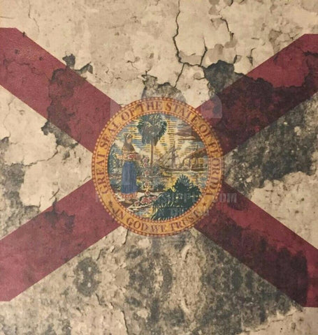 Florida State Flag Custom Print