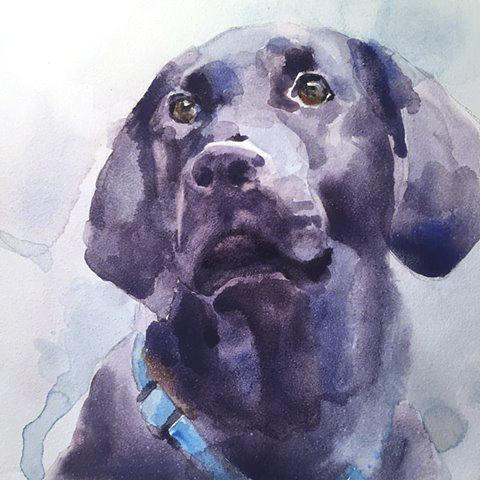 Original Watercolor Pet Portrait on Paper