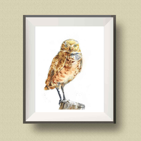 Burrowing Owl Wall Art Print