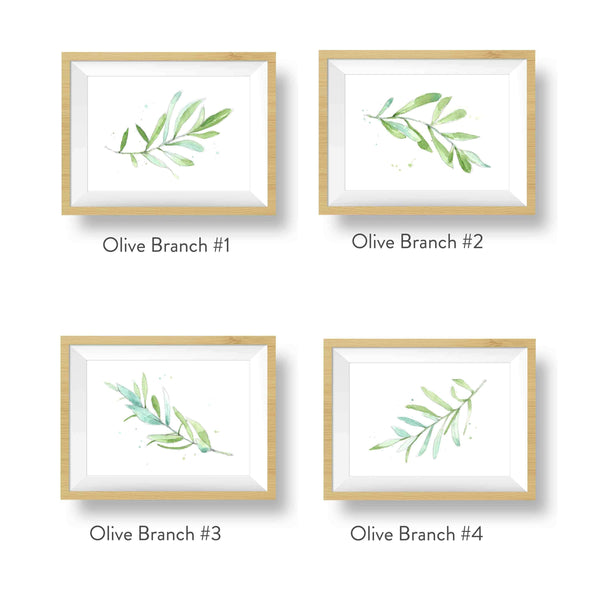 olive branch watercolors