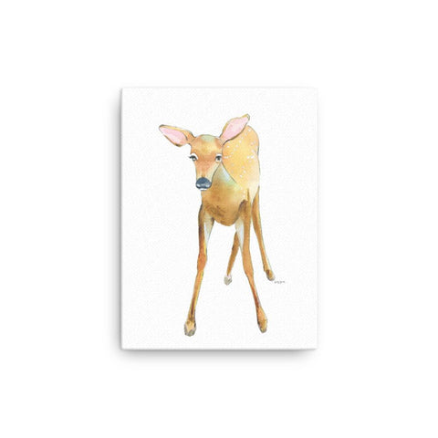 Woodland Fawn Canvas Print