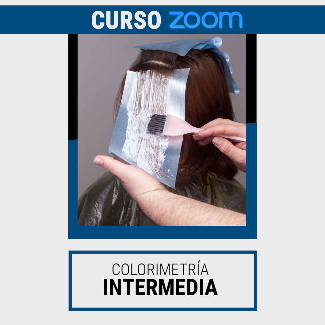 Curso Intermedio de Colorimetría - Zoom