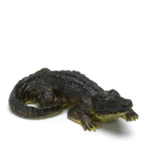 A miniature alligator.