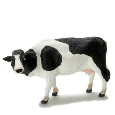 A miniature black and white cow.