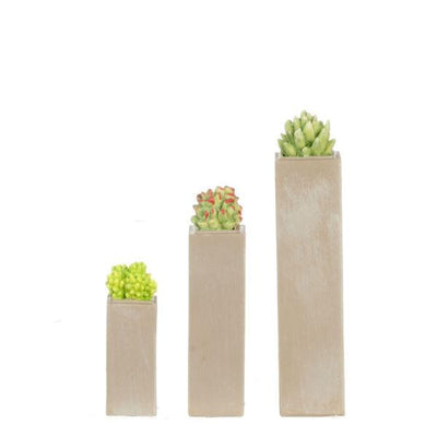 Three dollhouse miniature concrete planters with succulents on them.